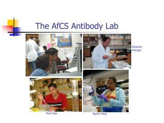 The AfCS Antibody Lab