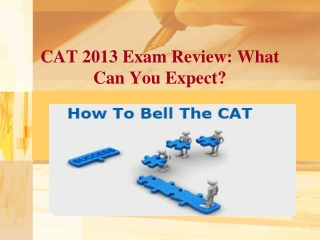 CAT 2013 Review