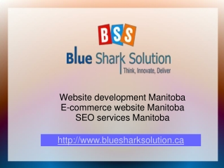 Website development Manitoba – escalate your online business