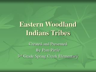 Eastern Woodland Indians Tribes