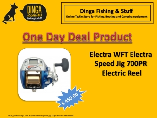 Electra WFT Speed Jig 700PR Electric Reel