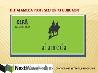 DLF Alameda Gurgaon