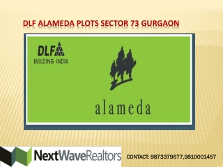 DLF Alameda Plots sector 73 Gurgaon Call-  91 9810001457