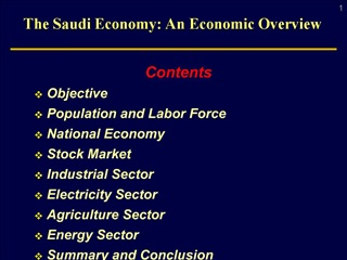 The Saudi Economy: An Economic Overview