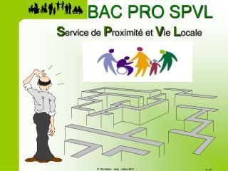 Service de Proximit� et Vie Locale