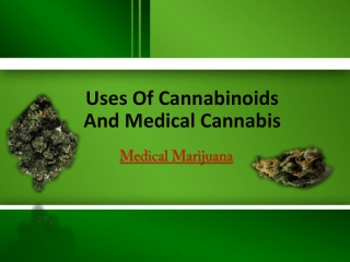 Uses Of Cannabinoids And Medical Cannabis