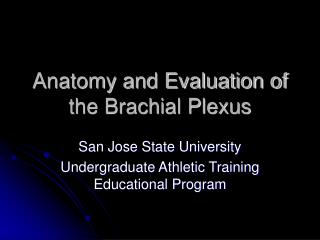 Anatomy and Evaluation of the Brachial Plexus