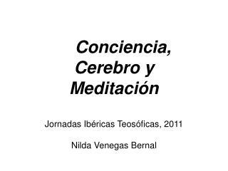 conciencia, cerebro y meditaci