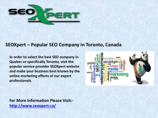 SEOXpert – Popular SEO Company in Toronto, Canada