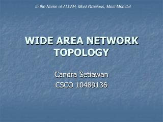 WIDE AREA NETWORK TOPOLOGY