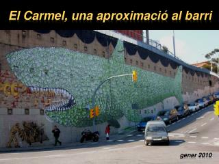 El Carmel, una aproximació al barri