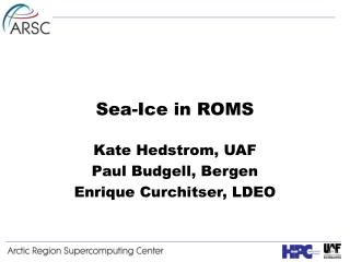 Sea-Ice in ROMS