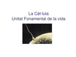 La Cèl·lula Unitat Fonamental de la vida