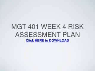 MGT 401 Week 4 Risk Assessment Plan