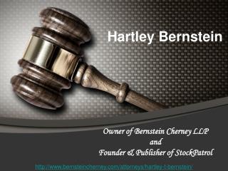 Hartley Bernstein Corporate and Civil Litigator