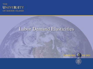 Labor Demand Elasticities
