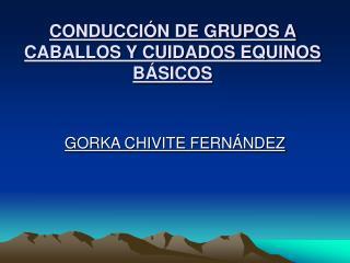 CONDUCCI N DE GRUPOS A CABALLOS Y CUIDADOS EQUINOS B SICOS