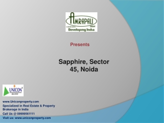 Amrapali Sapphire Noida