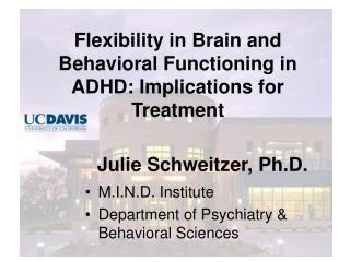 Julie Schweitzer, Ph.D.