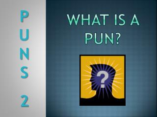 WHAT IS A PUN?