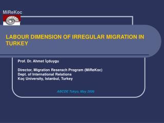 LABOUR DIMENSION OF IRREGULAR MIGRATION IN TURKEY
