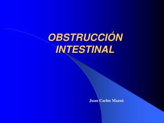 OBSTRUCCI�N INTESTINAL