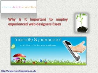 Web Designers Essex