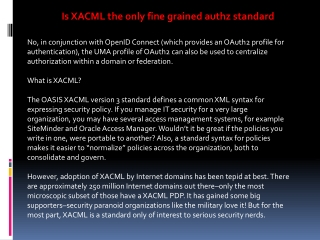 Is XACML the only fine grained authz standard