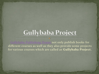 Gullybaba Project Report