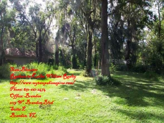 111 Hickory Creek Dr, BRANDON, FL 33511