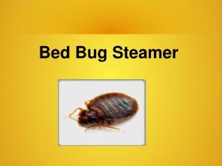Bed Bug Steamer