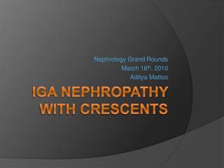 Crescentic IgA Nephropathy