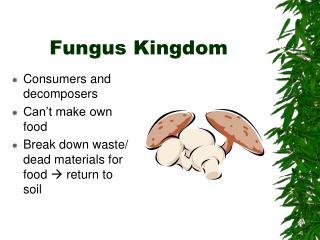 Fungus Kingdom