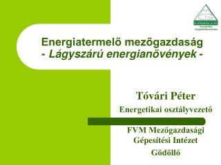 Energiatermelo mezogazdas g - L gysz r  energian v nyek -