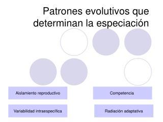 Patrones evolutivos que determinan la especiaci n