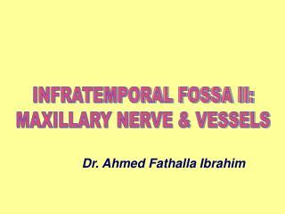 INFRATEMPORAL FOSSA II: MAXILLARY NERVE  VESSELS