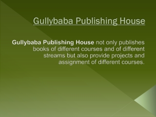 Project report gullybaba