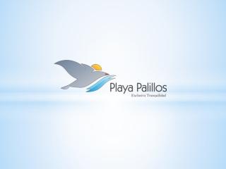 Playa Palillos