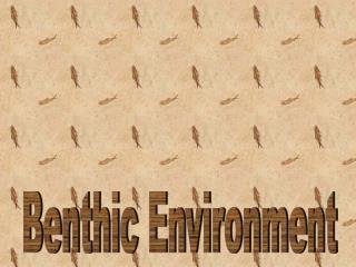 benthic species