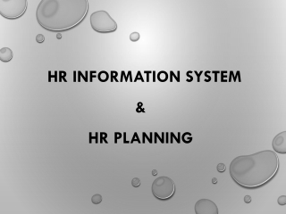 HUMAN RESOURCES PLANNING,ENVIRONMENTAL SCANNING INFORMATION SYSTEMS