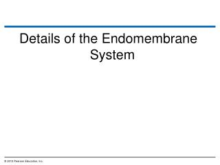 Details of the Endomembrane System
