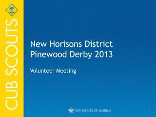 New Horisons District Pinewood Derby 2013