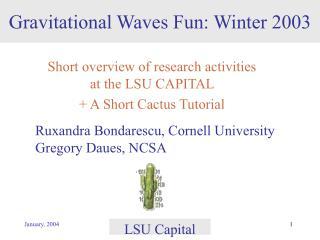 Gravitational Waves Fun: Winter 2003