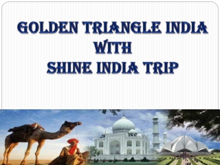 Golden Triangle India with Shine India Trip
