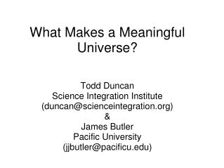 What Makes a Meaningful Universe