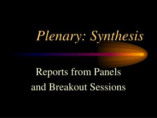 Plenary: Synthesis