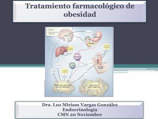 Dra. Luz Miriam Vargas Gonz lez  Endocrinolog a  CMN 20 Noviembre