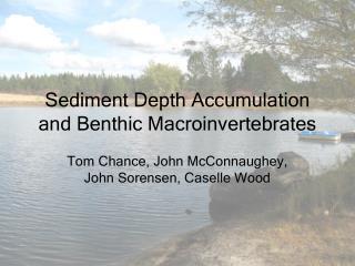 Sediment Depth Accumulation and Benthic Macroinvertebrates