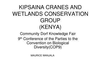 KIPSAINA CRANES AND WETLANDS CONSERVATION GROUP KENYA