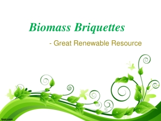 Biomass Briquettes- Great Renewable Resource